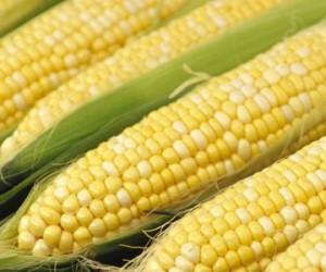Food - Corn