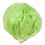 Food - Iceberg lettuce