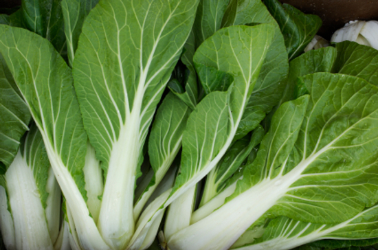 Bok Choy Know Your Fruits and Veggies Defeat Diabetes Foundation