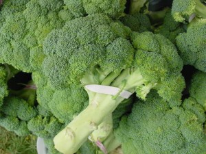 Food - broccoli