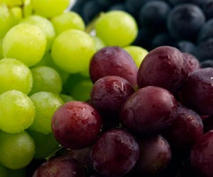 Food - grapes