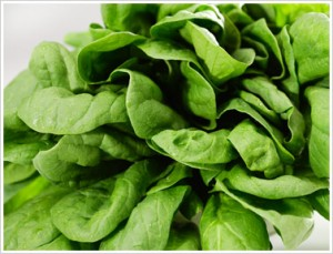 Food - spinach