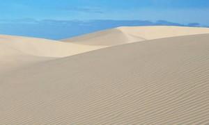 Physical Activity  Sand dunes