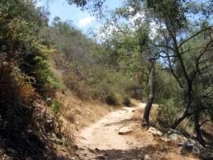 Physical activity   Hiking Trails