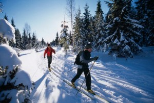 Physical activity   cross-country-skiing
