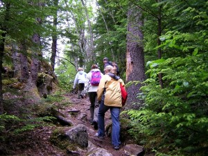 Physical activity  group hiking