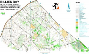 Physical activity orienteering map