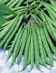 food - green beans2