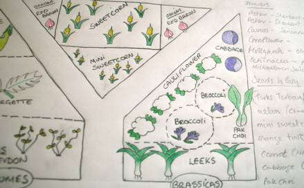 Garden Planning Defeat Diabetes Foundation
