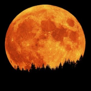 KIDD - full-moon-3