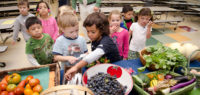 Healthy fruits and veggies in schools