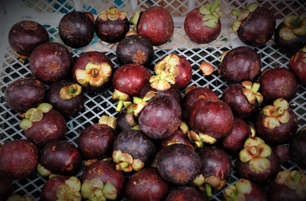 Health benefits of mangosteen and preventing diabetes