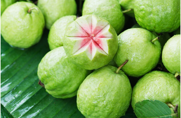 Guava health benefits and diabetes prevention