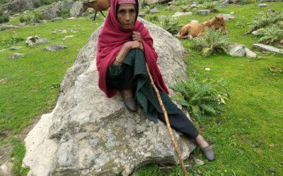 Afgani nomads